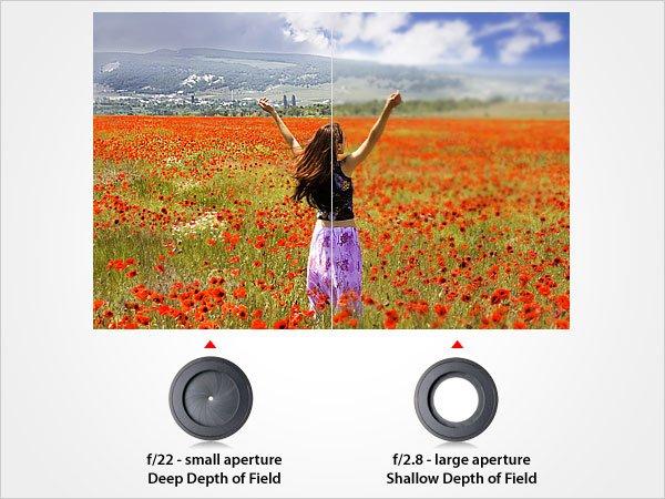 apertures-effect-on-depth-of-field.jpg.1c959ad17097e94f14488d8659ce0506.jpg